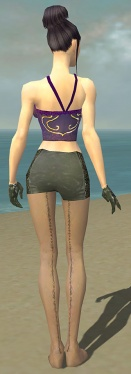 Mesmer Elite Enchanter Armor F gray arms legs back.jpg