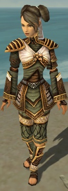Monk Elite Canthan Armor F gray front.jpg
