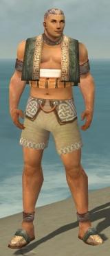 Monk Vabbian Armor M gray chest feet front.jpg