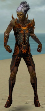 Necromancer Istani Armor M dyed front.jpg