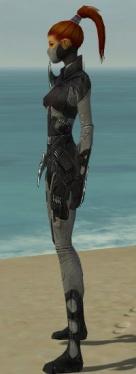 Assassin Kurzick Armor F gray side.jpg