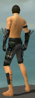 Assassin Imperial Armor M gray arms legs back.jpg