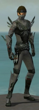 Assassin Imperial Armor M gray front.jpg