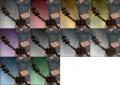 Charrslayer Bow colored.jpg