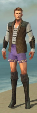 Mesmer Enchanter Armor M gray chest feet front.jpg