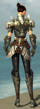 Warrior Deldrimor Armor F gray back.jpg