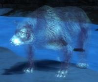 Bear Spirit.jpg