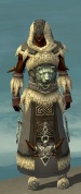 Dervish Norn Armor M gray front.jpg