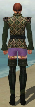 Mesmer Courtly Armor M gray chest feet back.jpg