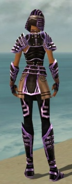 Warrior Ancient Armor F dyed back.jpg