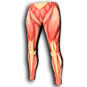 Muscle Leggings.png