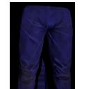 Blue Sports Pants.png