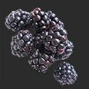 Icon Blackberries.png