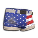 Stars And Stripes Shorts.png