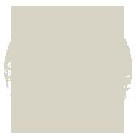 File:Icon-US-Symbol.png