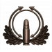 Pointer Quick Fire (Bronze)