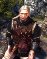 Tw2 screenshot armor armorofbanard.png