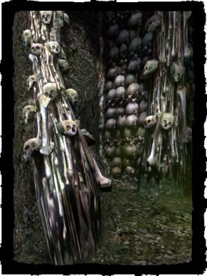 Beinhaus in den Katakomben vom alten Herrenhaus
