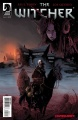 The Witcher Dark Horse cover no2.jpg