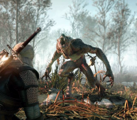 Tw3 e3 2014 screenshot - Geralt vs werewolf.png