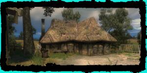 the healer's hut