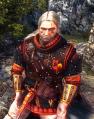 Tw2 screenshot armor seltkirk.png
