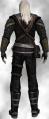 Geralt Elfen2F.png