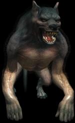 Bestiary Werewolf full.png