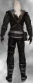Geralt neutral2F.png