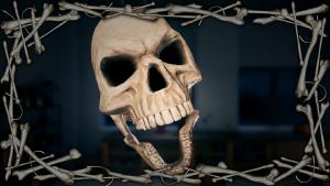 Frame Bones.png