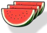 Watermelon (Icon).png