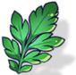 Cilantro (Icon).png