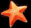 Summer Starfish (Icon).png