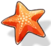 Summer Starfish (Icon).png