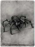 Contract spider.png