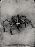 Killed spider.png