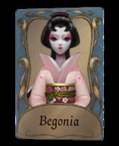 Begonia Geisha.png