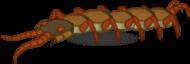 Monster Beast GiantCentipede.png