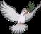 Icon Equipment JimDarkmagic Dove3.png
