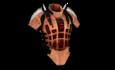 HEAVYARMOR1 rustic.png
