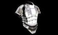 Heavy Armor (Rank 1).png