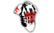 Heavy Armor Red Dragon