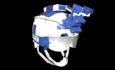 K. Style Helmet (GODS).png