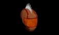 K. Style Moto Helmet (Rust).png