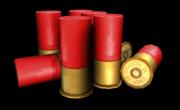 Shotgun Shell 8x