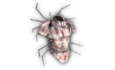 Heavy Armor (Spider).png