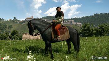 KC Deliverance horse2.jpg