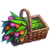 Tulips Crops.png