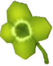 Clover..png