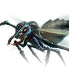 Noble Ant Leader.png